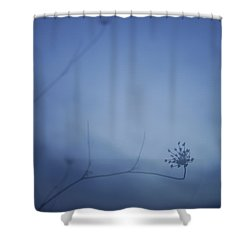 Blue Dream Shower Curtain by Guido Montanes Castillo