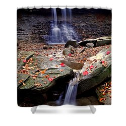 Blue Hen Falls Shower Curtain by Frozen in Time Fine Art Photography