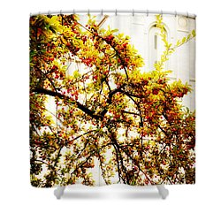 Branch Of Heaven Shower Curtain by La Rae  Roberts