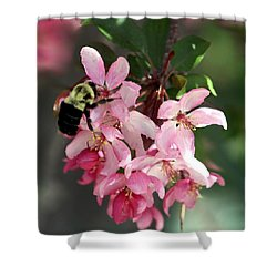 Shower Curtain featuring the photograph Buzzing Beauty by Elizabeth Winter