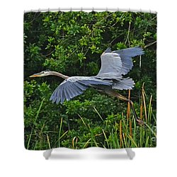 Changing Location Shower Curtain