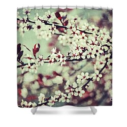 Cherry Shower Curtain