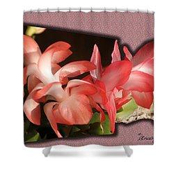 Christmas Cactus Shower Curtain by EricaMaxine  Price