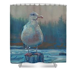 Shower Curtain featuring the painting Coastal Watch by Donald Maier