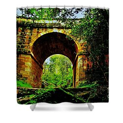 Colonial Era Bridge Shower Curtain