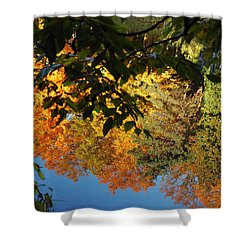 Colorful Reflections Shower Curtain by LeeAnn McLaneGoetz McLaneGoetzStudioLLCcom