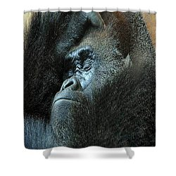 Confidence Shower Curtain by Skip Willits
