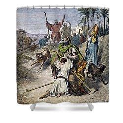 Dor�: Prodigal Son Shower Curtain by Granger