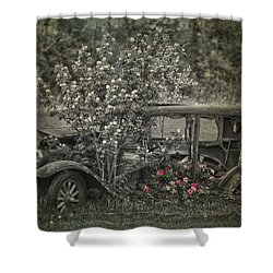 Driven To Find Love  Shower Curtain by Jerry Cordeiro