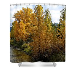 Fall Colors Shower Curtain by Steve McKinzie