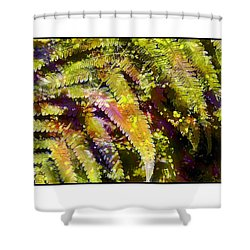 Shower Curtain featuring the photograph Fern In Dappled Light by Judi Bagwell