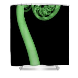 Fern, X-ray Shower Curtain by Ted Kinsman