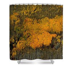 Fine Art Of Nature Shower Curtain by Vicki Pelham