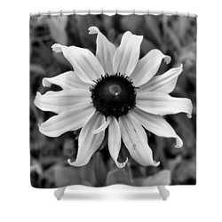 Flower Shower Curtain by Brian Hughes