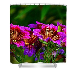 Gleaming In Purple And Gold Shower Curtain by Byron Varvarigos