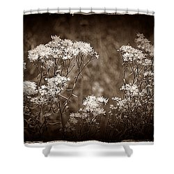 Going To Seed Shower Curtain by Judi Bagwell
