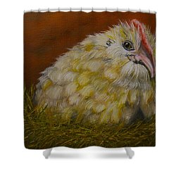 Shower Curtain featuring the painting Hector by Marlyn Boyd