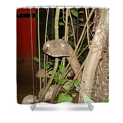 Shower Curtain featuring the photograph Hello by Katy Mei
