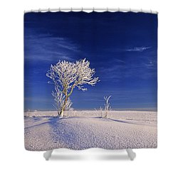 Hoar Frost On Trees, Bungay, Prince Shower Curtain by John Sylvester