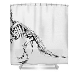 Iguanodon, Mesozoic Dinosaur Shower Curtain by Science Source