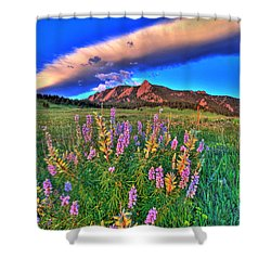 In The Moment Shower Curtain by Scott Mahon