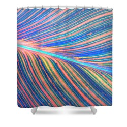 Leaf Colors Filtered Shower Curtain
