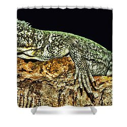 Let Me Strike A Pose Shower Curtain by Lourry Legarde