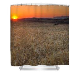Light Fields Shower Curtain by Guido Montanes Castillo