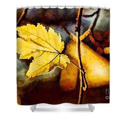 Lone Leaf Shower Curtain by Darren Fisher