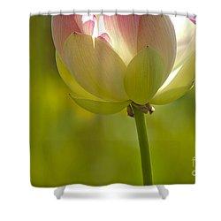 Lotus Detail Shower Curtain