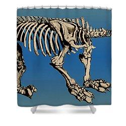 Megatherium Extinct Ground Sloth Shower Curtain by Science Source
