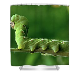 Munch A Bunch Shower Curtain