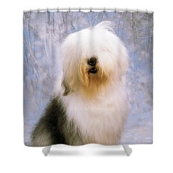 Old English Sheepdog Shower Curtain by The Irish Image Collection
