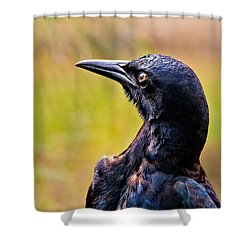 On Alert Shower Curtain by Christopher Holmes