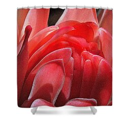 Pink Torch Ginger Shower Curtain