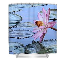 Pink Water Lily Shower Curtain by Sabrina L Ryan