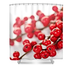 Red Christmas Berries Shower Curtain by Elena Elisseeva