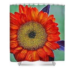 Red Sunflower  Shower Curtain by Saija  Lehtonen