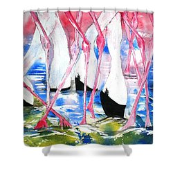 Rift Valley Flamingo Feeding Shower Curtain