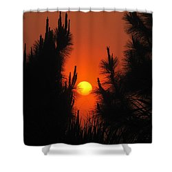 Rise And Pine Shower Curtain