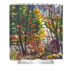 Shower Curtain featuring the painting River Bend by Donald Maier