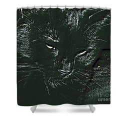 Shower Curtain featuring the photograph Satin by Donna Brown