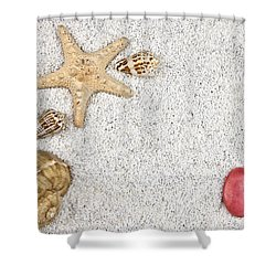 Seastar And Shells Shower Curtain by Joana Kruse