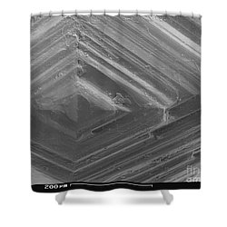 Sem Of A Diamond Shower Curtain by Ted Kinsman