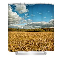Skyway Shower Curtain by Rachel Cohen