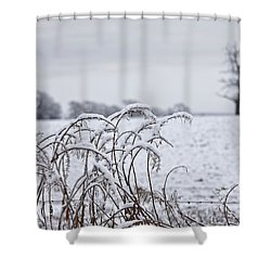 Snow Covered Trees And Field Shower Curtain by John Short
