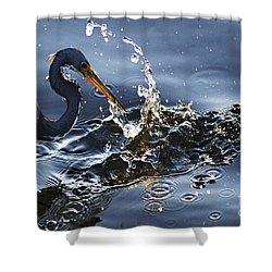 Splash Shower Curtain by Bob Christopher