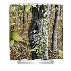 Springtime At Collins Creek Shower Curtain by Mary Ann King