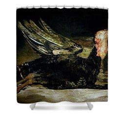 Still Life Shower Curtain by Goya