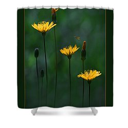 Summer Dining Shower Curtain by Ron Jones
